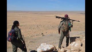 أخبار عربية وعالمية - الرئيس الفرنسي والعاهل الأردني يناقشان جهود مكافحة #الإرهاب