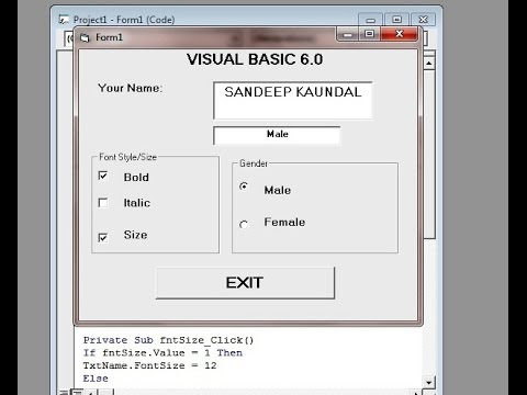 Learn Visual Basic 6 0- Frame Control,Check Box and Option Buttons- Quick  and easy