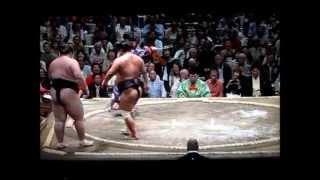 妙義龍vs逸ノ城 大相撲平成27年秋場所 Myogiryu vs ichinojo Sumo.