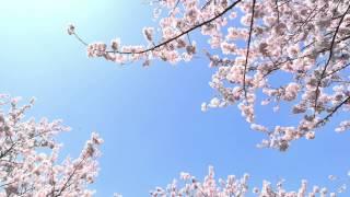 作曲:増谷 賢 ピアノアレンジ:川口 晴子 アニメ「冴えない彼女の育て...