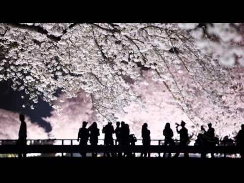 Takashi Yoshimatsu [吉松 隆]: Symphony No. 5, Op. 87 (Sachio Fujioka, BBC Philharmonic)