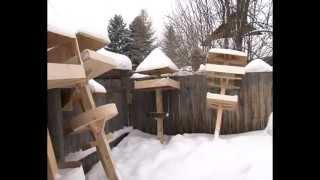Златоустовцы сделали кормушки для птиц