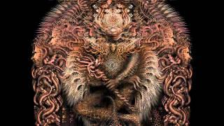 Meshuggah - Demiurge