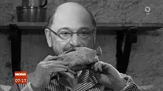 Die Abenteuer des braven Sozialdemokraten Schulz