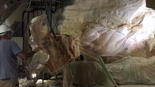 Le chantier de la réplique de la grotte Cosquer a débuté à Marseille