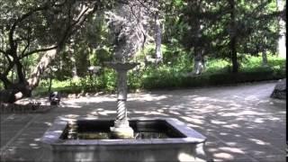 Никитский ботанический сад июнь 2014