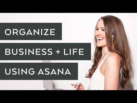 How To Use Asana to Organize Your Business and Life