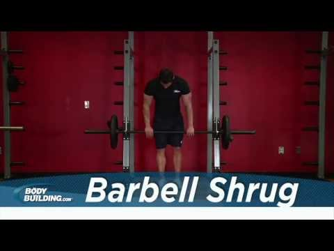 Barbell Shrug - Shoulder Exercise - Bodybuilding.com