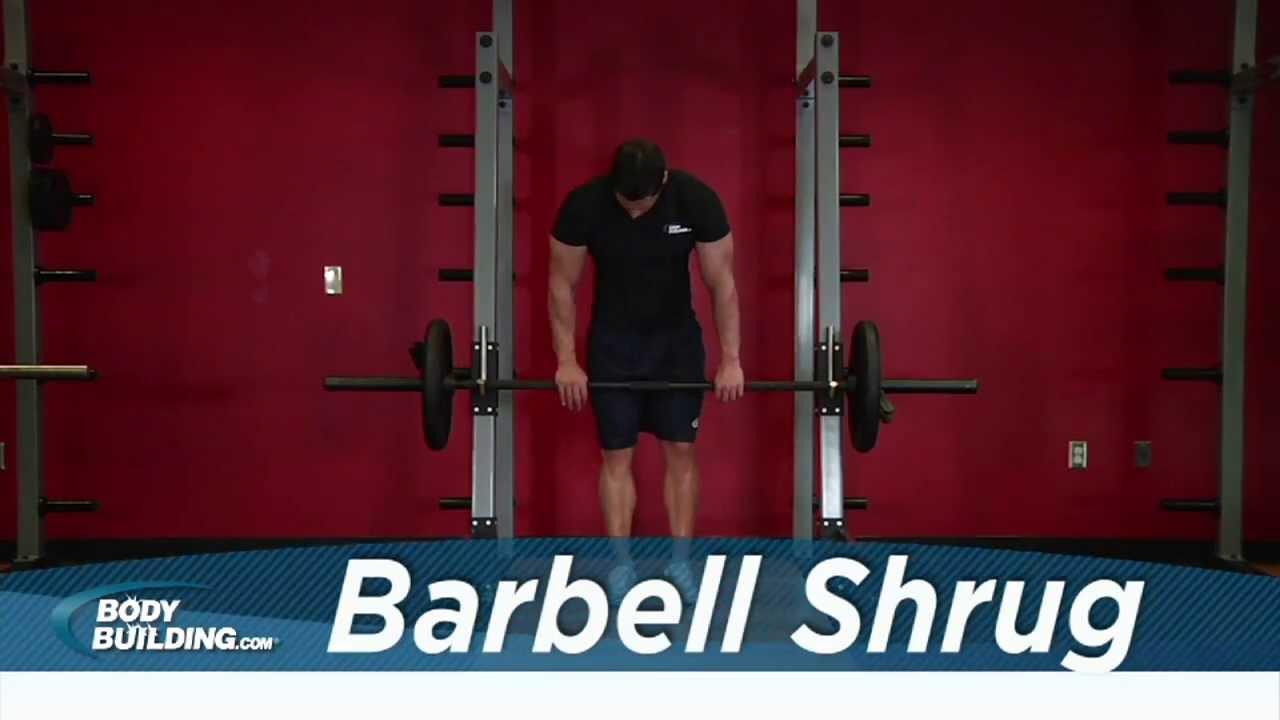 Barbell Shrug - Shoulder Exercise - Bodybuilding.com - YouTube