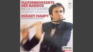 Flute Concerto in E Minor: I. Allegro non molto