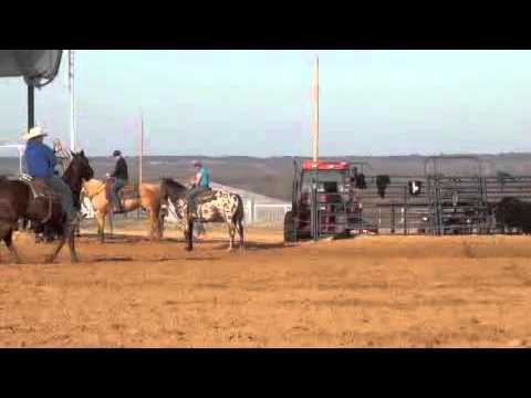 Speed Williams and Clay Cooper Practice Team Roping Jan 2012.