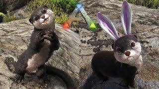 ARK最可愛生物更新!厳選カワウソ(otter)をテイム!【Ark Survival Evolved】【Season3part64】【公式PVE】