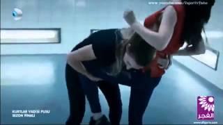 Aynora VS lisa