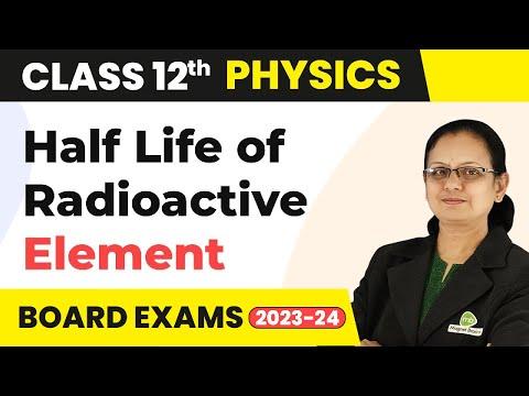 Half Life Of Radioactive Element - Nuclei | Class 12 Physics