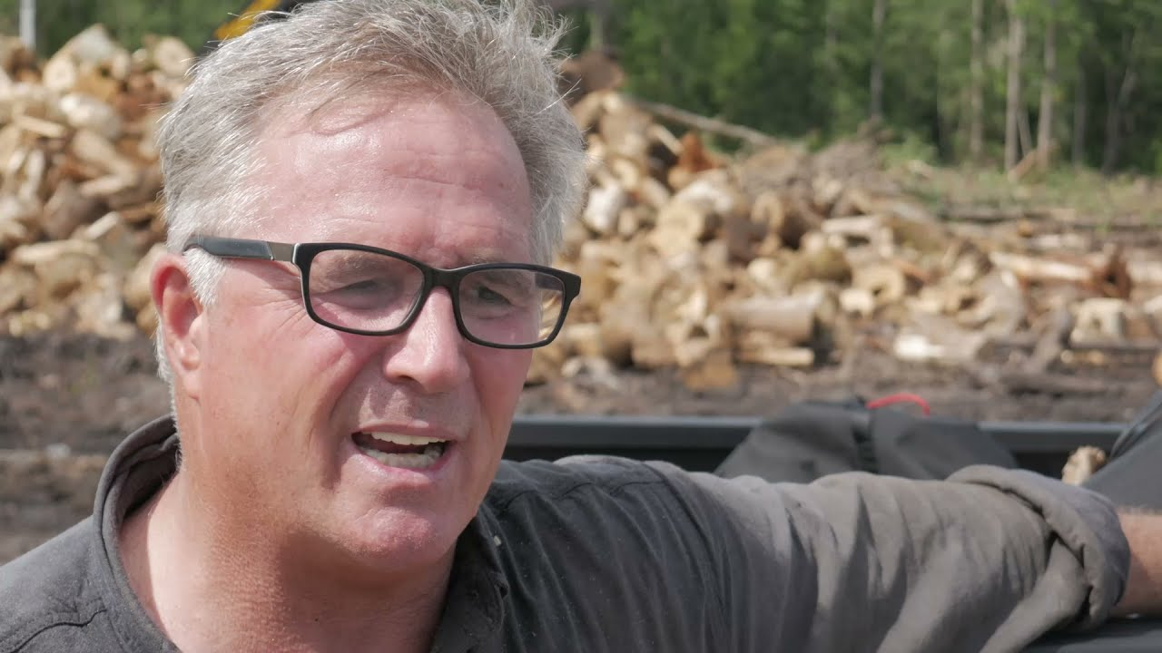 """SWAMP LOGGERS NC / """"This Is Gonna Cost $400,000 Dollars or More."""""""