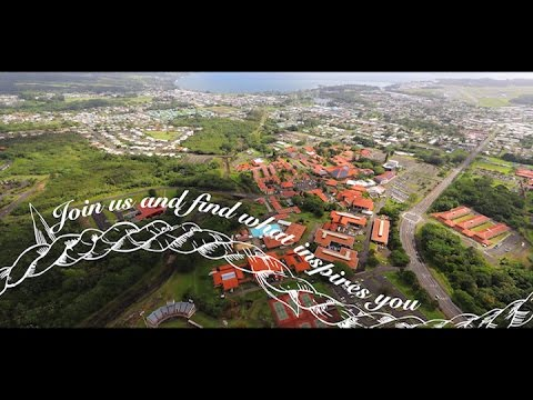 University of Hawai'i Hilo - Join us and find what inspires you.