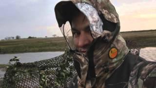 chasse en argentine