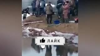 Приколы на рыбалке 2021 Я РЖАЛ ДО СЛЕЗ Неожиданные случаи на рыбалке
