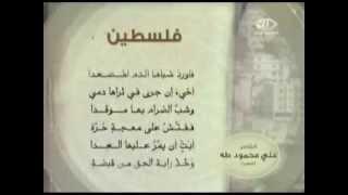 قصيدة فلسطين للشاعر علي محمود طه