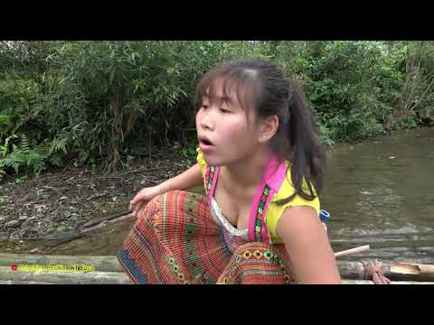 Ethnic Girl Builds An Amazing Fish Trap To Catch River Fish In Bulk | Survival Skills