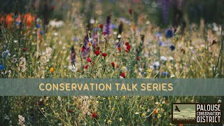 Conservation Talk Series   The Threatened Spalding's Catchfly of the Palouse Prairie