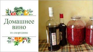 Как приготовить домашнее вино из смородины. Не пожалеете!