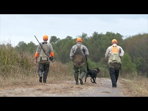 Arkansas Wildlife - S3.E2: Rail Hunting, Mayflower Firing Range And AGFC Education Programs