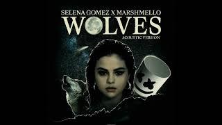 Wolves (Acoustic Version) - Selena Gomez,Marshmello
