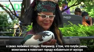 Мама Голубь и ее птицы в Нью-Йорке
