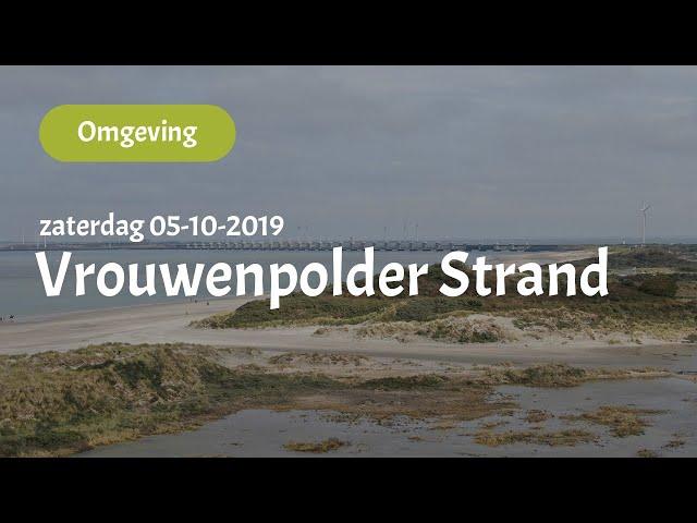 Strand Vrouwenpolder (05-10-2019)