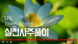 [자연법명리학회]  ㅣ 실전사주풀이 제 6강 ㅣ정화(丁火)의 쓰임