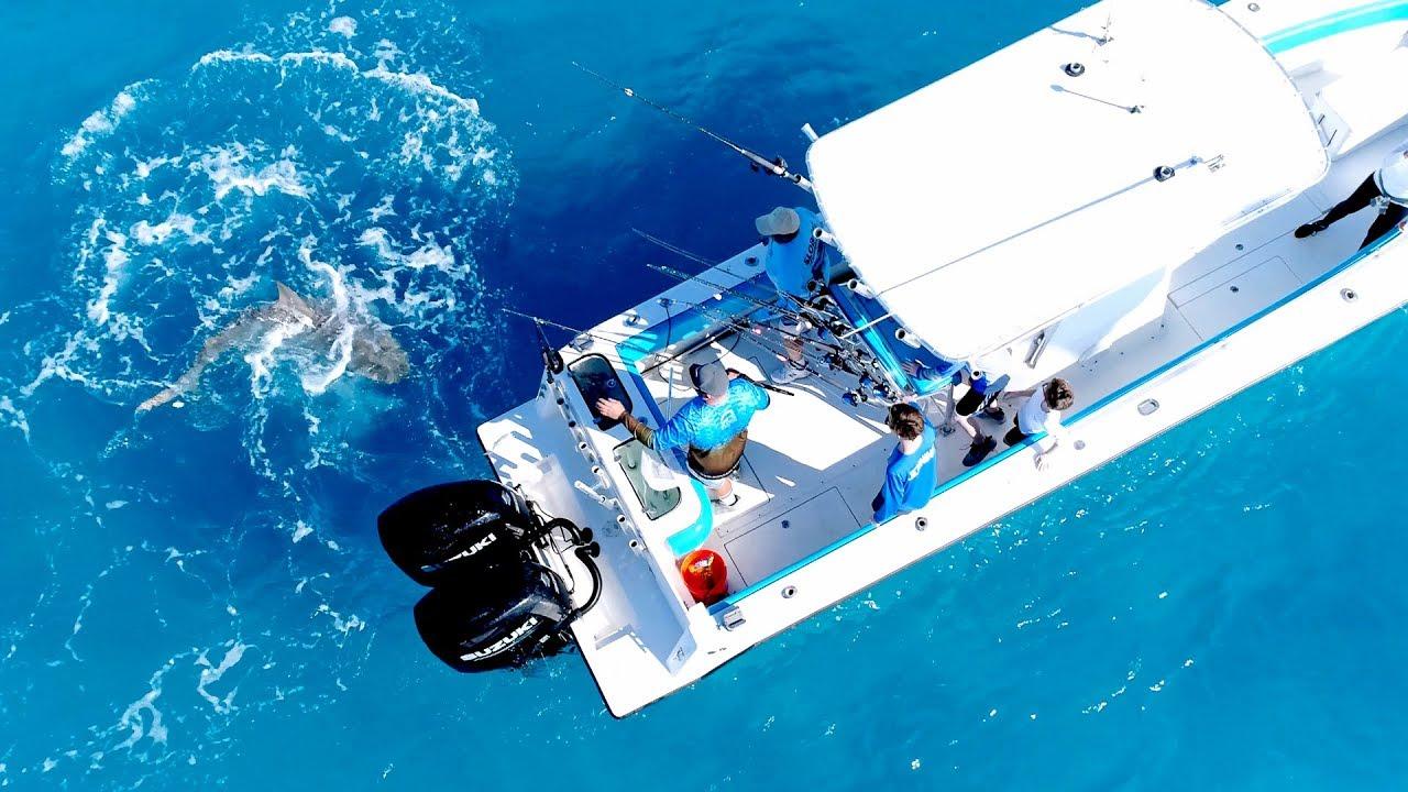 00fba5b3131 Angry Bull Shark Randomly Attacks 30ft Boat - 4K - YouTube