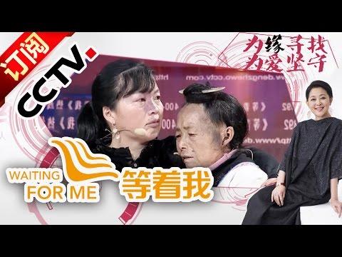 《等着我》 20160417女子被拐27年 仅凭胎记寻母亲 | CCTV