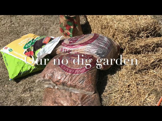 Making our no dig garden!