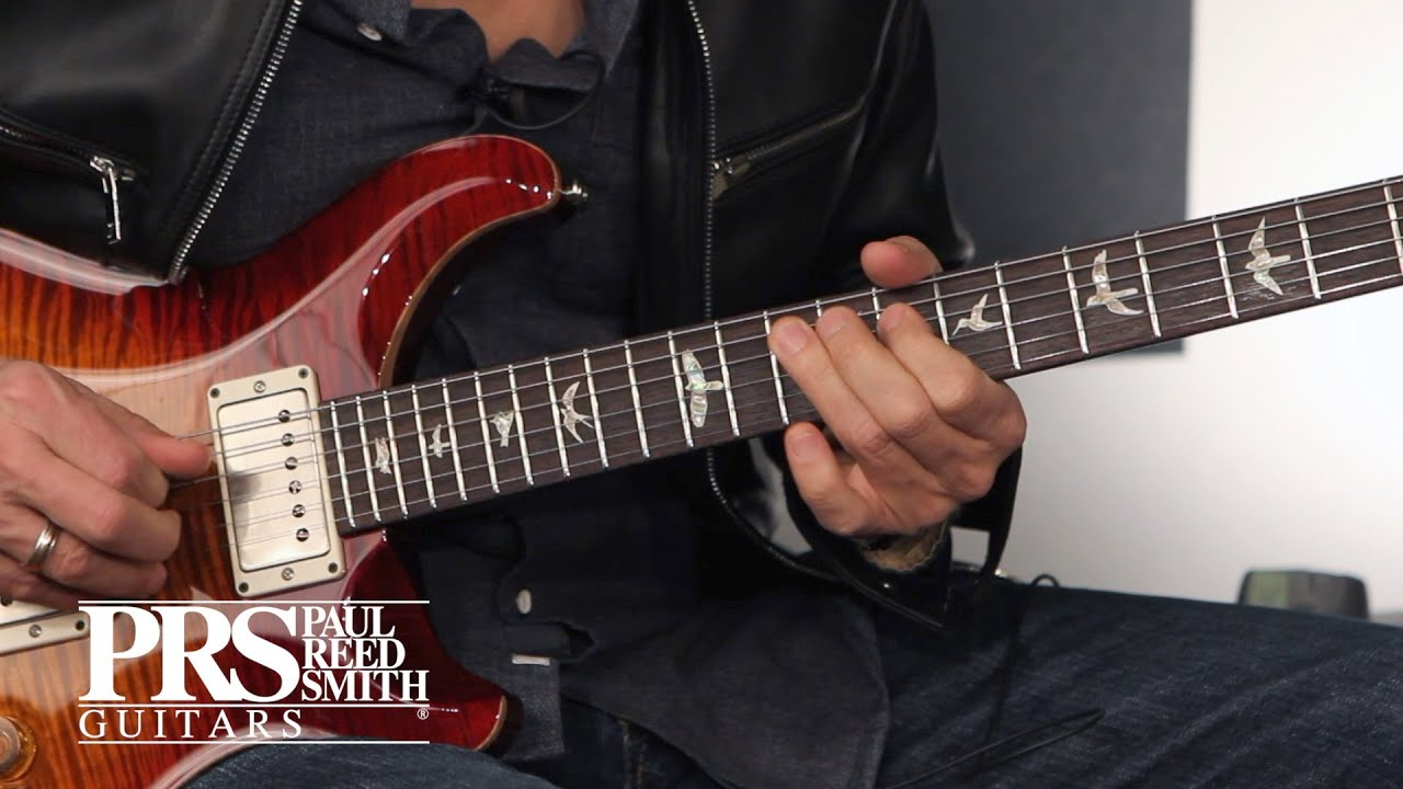 Download The DGT   Demo with David Grissom   PRS Guitars