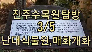 경남수목원(진주수목원) 탐방 3/5 - 난대식물원,매화…