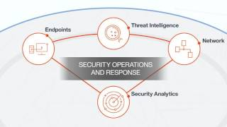 The IBM Security Immune System