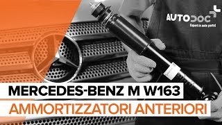 Manuale officina ML W163 online