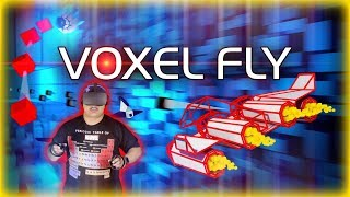 Voxel Fly Quick Look: Endless Fight (2019)