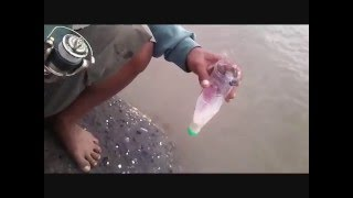 Sensasi Strike - Mancing Belanak Pake Botol Plastik / mullet fishing with plastic bottles