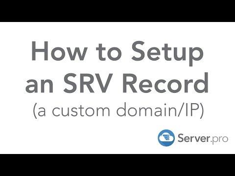 How To Setup An SRV Record (a Custom Domain/IP) - Server.pro