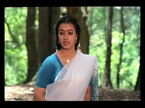 Mella Thiranthathu Kadhavu Tamil Movie  Thedum Kann Paarvai  Song  Amala  Ilaiyaraaja