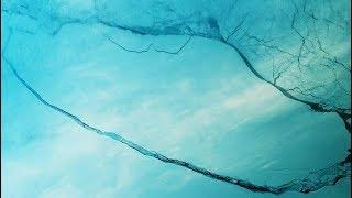 ¿Qué ocurrirá con el GRAN Iceberg desprendido de la Antártida?