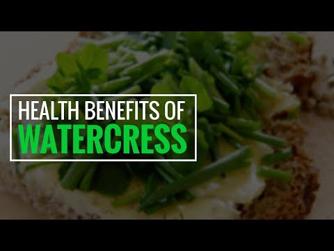 5 Amazing Benefits of Watercress: Healthiest Veggie In the World   Health Benefits   Health Solution