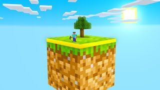 Skyblock but its inside A BLOCK