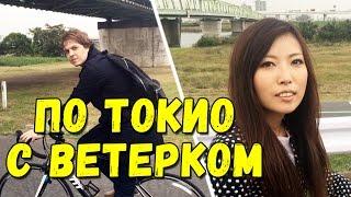 Один день в Японии. Осенний Токио через объектив телефона