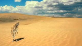 Удивительный мир пустыни Каракумы.wmv
