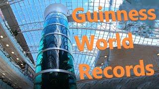Изнанка самого высокого аквариума в мире