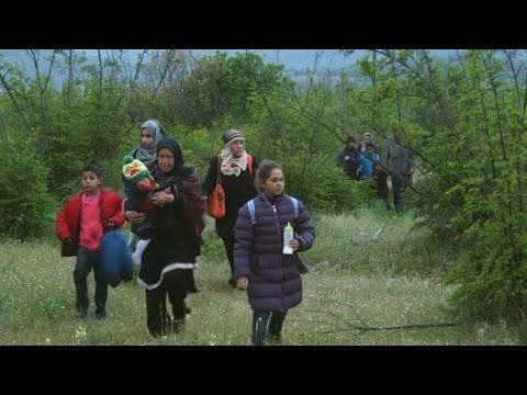 Беженцы скитаются по лесам, чтобы попасть в Македонию (новости)