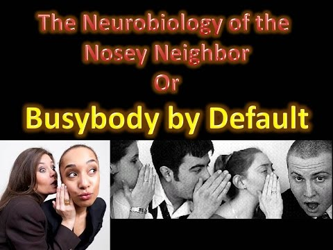 Default Mode Network and Neurobiology of a Busybody